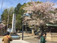 犬山城の写真・動画_image_549812