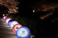 石舞台古墳の写真・動画_image_555055