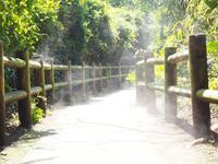 猿島の写真・動画_image_560984