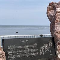 宗谷岬の写真・動画_image_563628