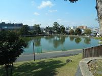猿沢池の写真・動画_image_564642