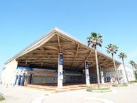 新江ノ島水族館の写真・動画_image_569318
