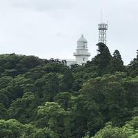 都井岬の写真・動画_image_579142