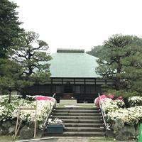 浄妙寺の写真・動画_image_581818