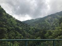 寸又峡の写真・動画_image_588823
