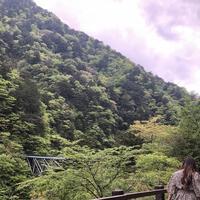 寸又峡の写真・動画_image_588825