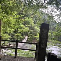 寸又峡の写真・動画_image_588826