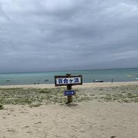 百合ヶ浜の写真・動画_image_600912