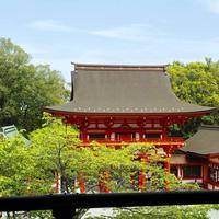 近江神宮の写真・動画_image_605910