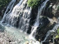 白ひげの滝の写真・動画_image_608809