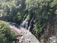 白ひげの滝の写真・動画_image_608810