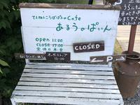 あるうのぱいんの写真・動画_image_608849