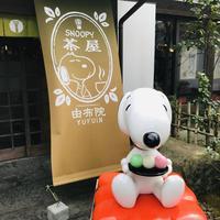 スヌーピー茶屋の写真・動画_image_610798