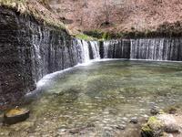 白糸の滝の写真・動画_image_617928