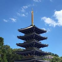 中山寺の写真・動画_image_623243