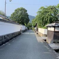 萩城城下町の写真・動画_image_624063