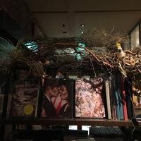 Brooklyn Parlor(ブルックリンパーラー)の写真・動画_image_624429