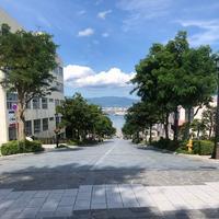 八幡坂の写真・動画_image_642448