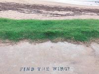 パームビーチ 天使の羽の写真・動画_image_642701