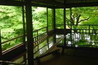 瑠璃光院の写真・動画_image_664321