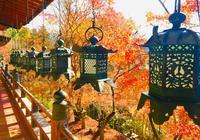 吉野山の写真・動画_image_664355
