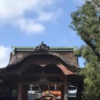 石清水八幡宮の写真・動画_image_666581