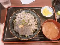 鎌倉駅の写真・動画_image_667898