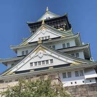大阪城の写真・動画_image_670714