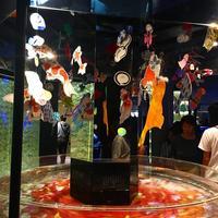 すみだ水族館の写真・動画_image_671718