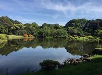 新宿御苑の写真・動画_image_671723