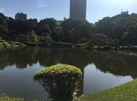 新宿御苑の写真・動画_image_671724