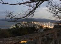 唐津城の写真・動画_image_671740
