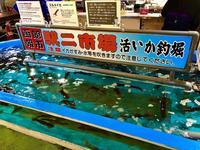 函館朝市の写真・動画_image_672943