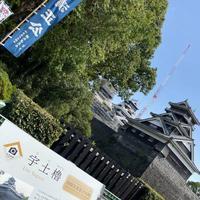 熊本城の写真・動画_image_673314