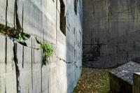 石山緑地の写真・動画_image_677456
