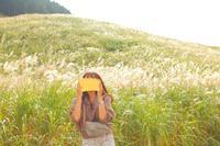 仙石原湿原植物群落の写真・動画_image_678272