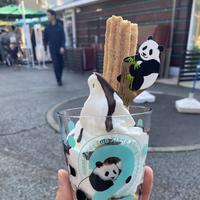 上野動物園の写真・動画_image_682821