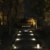 三井寺の写真・動画_image_683465