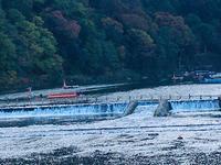 渡月橋の写真・動画_image_683581