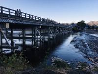 渡月橋の写真・動画_image_683584