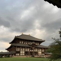 東大寺の写真・動画_image_685640