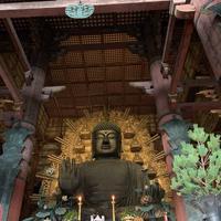 東大寺の写真・動画_image_685641