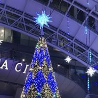 博多駅の写真・動画_image_688686