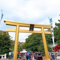 金神社の写真・動画_image_706431