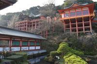 祐徳稲荷神社の写真・動画_image_707069