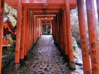 祐徳稲荷神社の写真・動画_image_708925