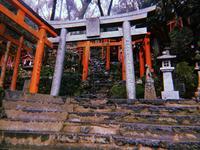 祐徳稲荷神社の写真・動画_image_708926