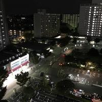箱根関所の写真・動画_image_709782