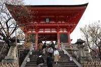 清水寺の写真・動画_image_709803