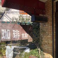 ポットリーの写真・動画_image_722291